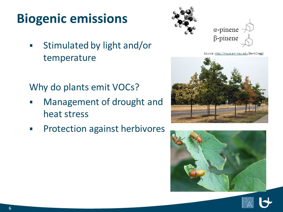 Biogenic emissions  Stimulated by light and/or temperature Why do plants emit VOCs?  Management of drought and heat stress  Protection against herb