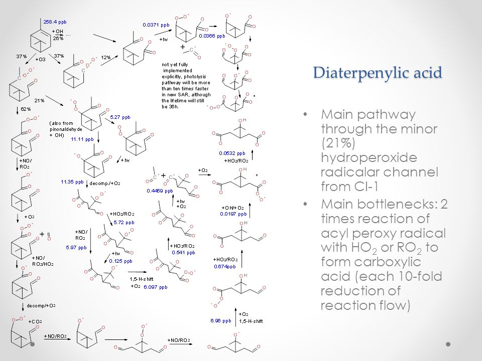 Diaterpenylic acid Main pathway through the minor (21%) hydroperoxide radicalar channel from CI-1 Main bottlenecks: 2 times reaction of acyl peroxy ra