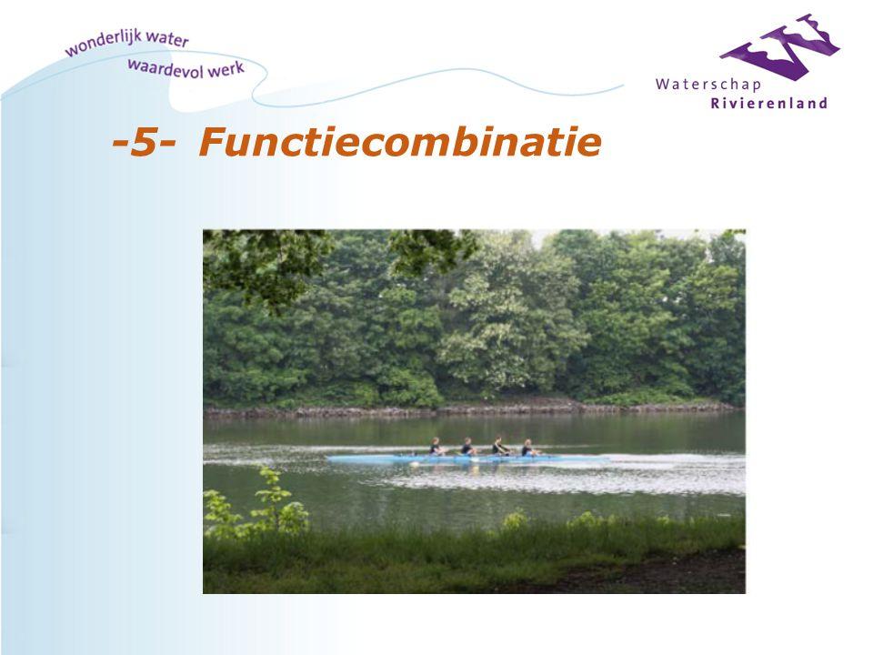 -5-Functiecombinatie