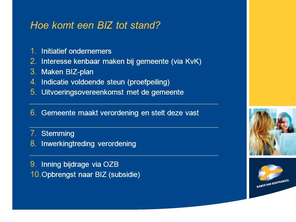 Het BIZ-plan Ambities Activiteiten BIZ-bijdrage + verdeling (andere inkomsten) Afbakening gebied/ categorieën Analyse gebied Analyse Doelgroepen