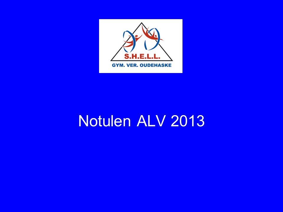 Notulen ALV 2013