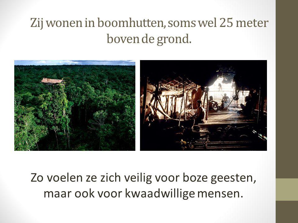 Zij wonen in boomhutten, soms wel 25 meter boven de grond. Zo voelen ze zich veilig voor boze geesten, maar ook voor kwaadwillige mensen.