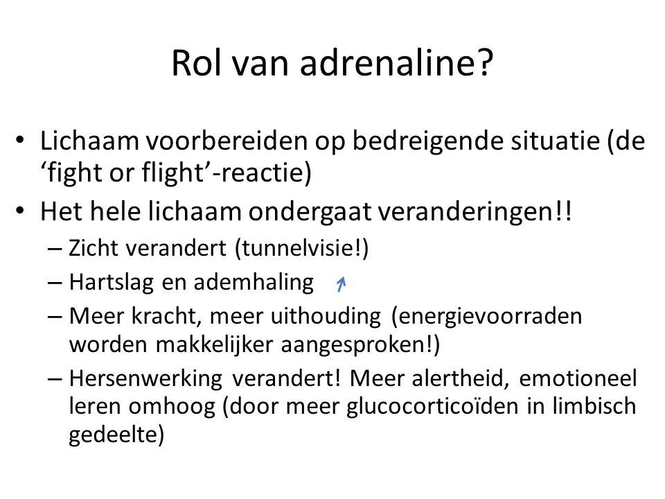 Rol van adrenaline? Lichaam voorbereiden op bedreigende situatie (de 'fight or flight'-reactie) Het hele lichaam ondergaat veranderingen!! – Zicht ver