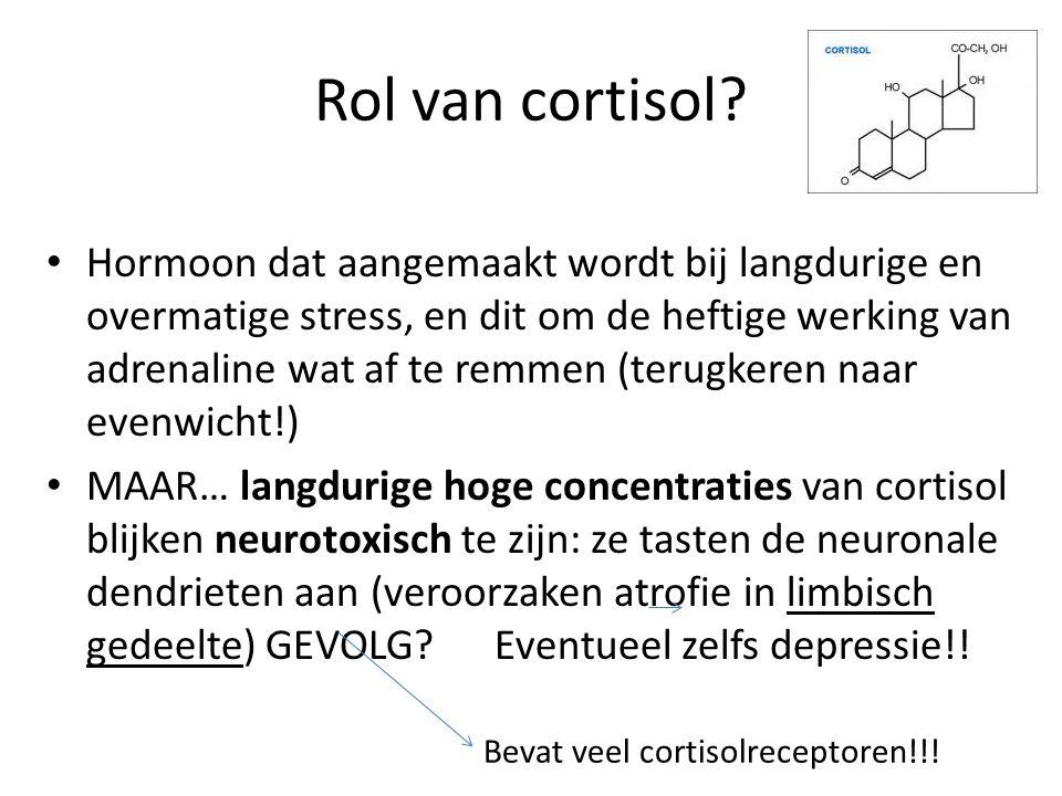 Rol van cortisol? Hormoon dat aangemaakt wordt bij langdurige en overmatige stress, en dit om de heftige werking van adrenaline wat af te remmen (teru