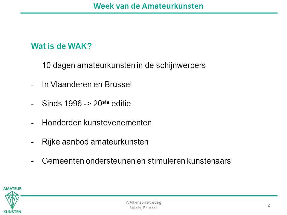 WAK-inspiratiedag Wiels, Brussel 3 Week van de Amateurkunsten Hoe gaat het in z'n werk.