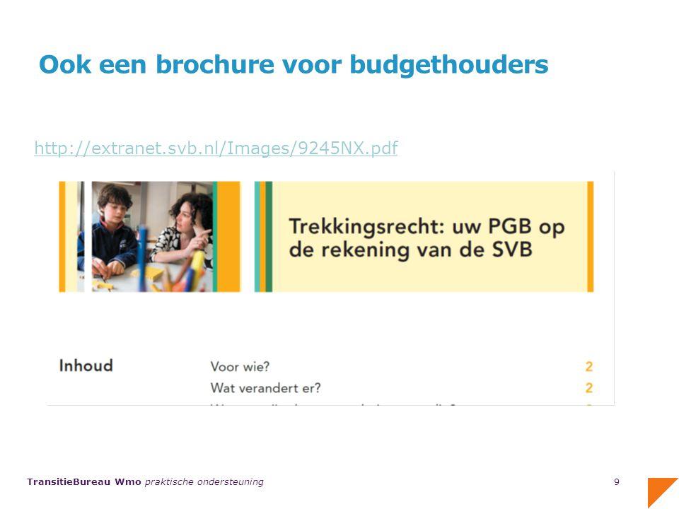 TransitieBureau Wmo praktische ondersteuning Inzicht in budget met budgetoverzicht 10