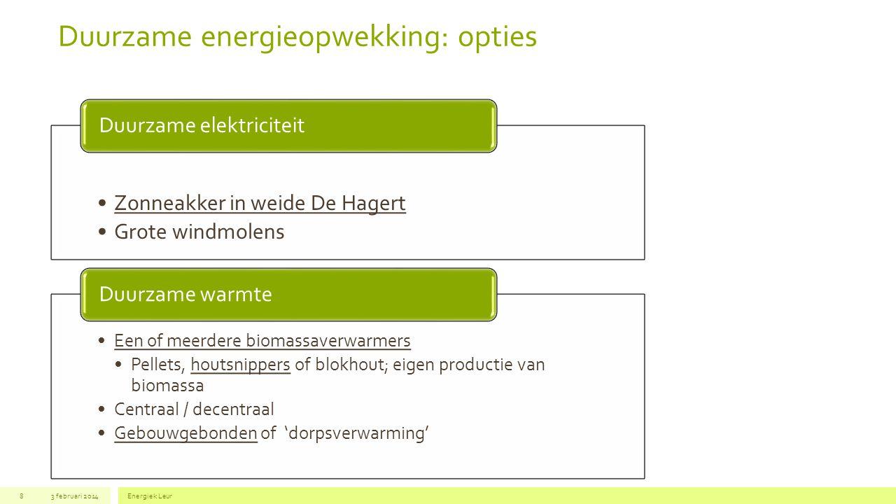 Duurzame energieopwekking: opties 3 februari 2014Energiek Leur8 Zonneakker in weide De Hagert Grote windmolens Duurzame elektriciteit Een of meerdere