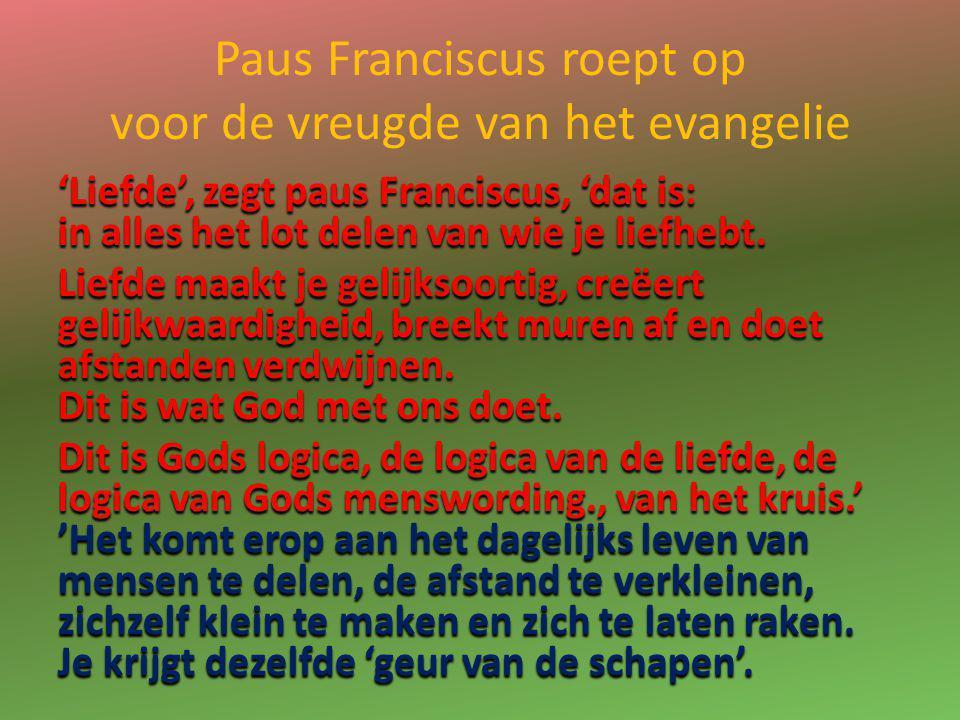 Paus Franciscus roept op voor de vreugde van het evangelie 'Liefde', zegt paus Franciscus, 'dat is: in alles het lot delen van wie je liefhebt. Liefde