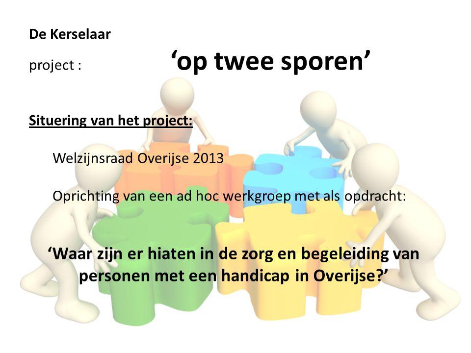 Situering van het project: Welzijnsraad Overijse 2013 Oprichting van een ad hoc werkgroep met als opdracht: 'Waar zijn er hiaten in de zorg en begelei