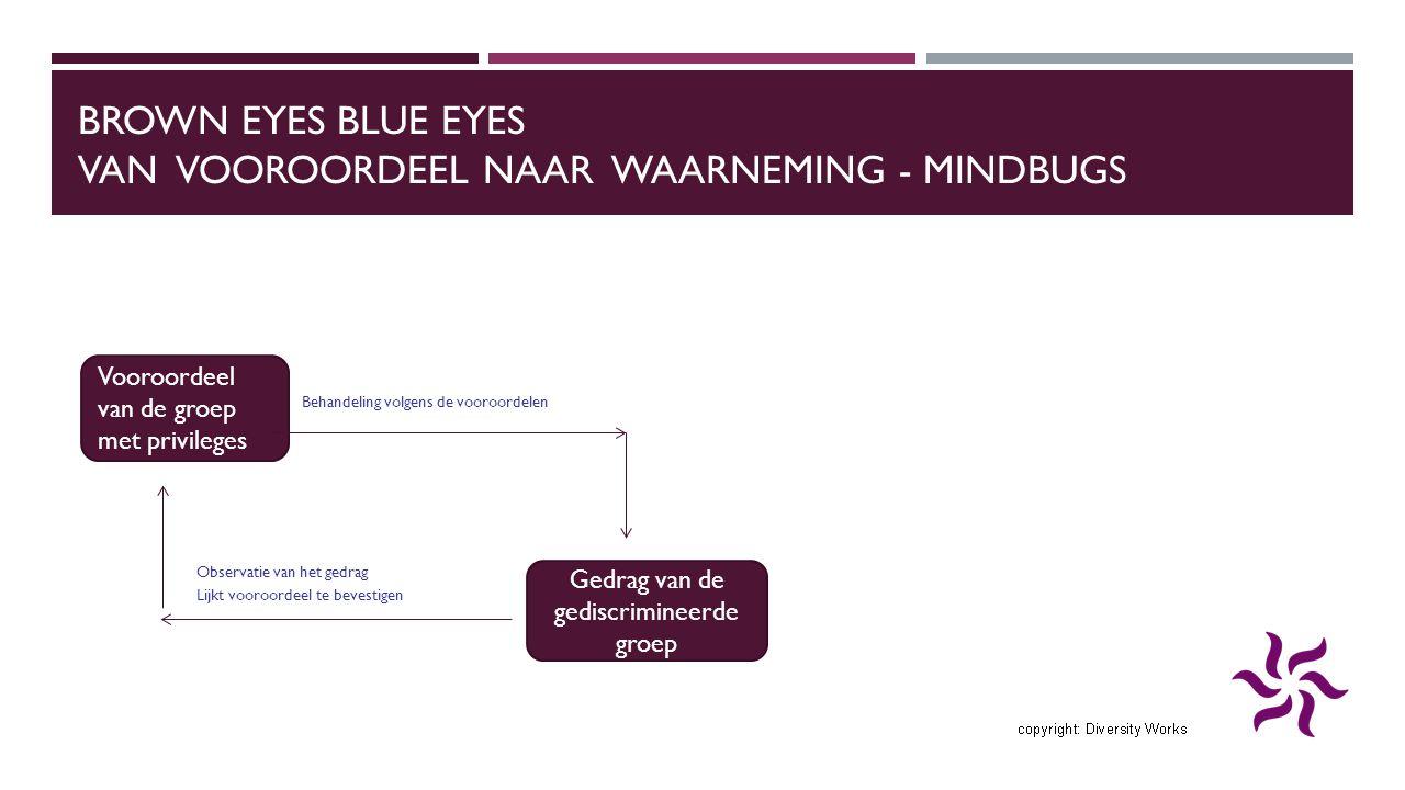 BROWN EYES BLUE EYES VAN VOOROORDEEL NAAR WAARNEMING - MINDBUGS Behandeling volgens de vooroordelen Observatie van het gedrag Lijkt vooroordeel te bevestigen Vooroordeel van de groep met privileges Gedrag van de gediscrimineerde groep