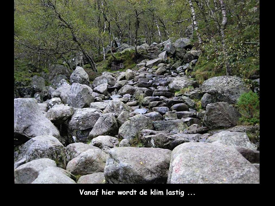 Het pad gaat verder... nog steeds plat ...