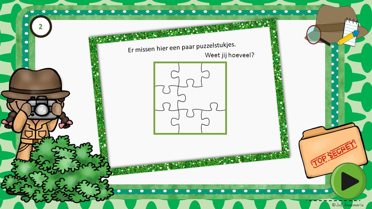 Er missen hier een paar puzzelstukjes. Weet jij hoeveel? 2