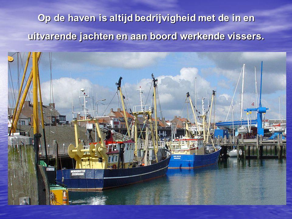 Het havengebied met de visservloot en de jachthaven geeft aan het dorp een aparte uitstraling.