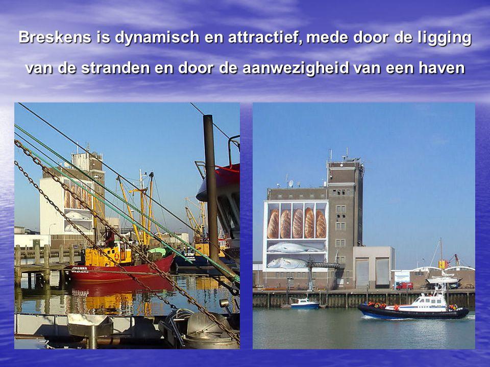 Op de haven is altijd bedrijvigheid met de in en uitvarende jachten en aan boord werkende vissers.
