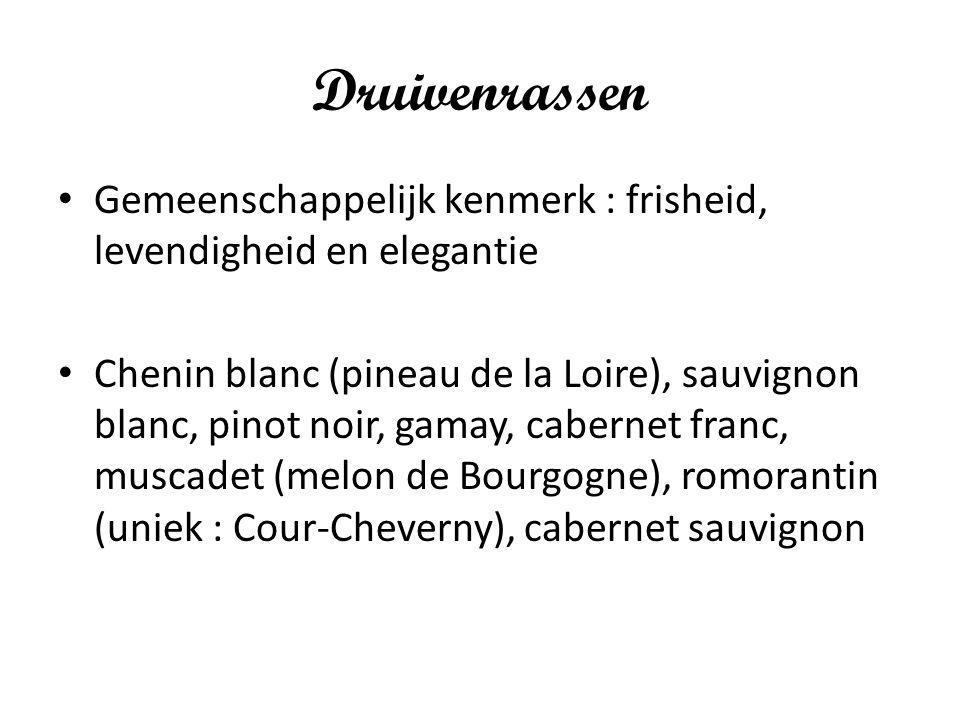 Druivenrassen Gemeenschappelijk kenmerk : frisheid, levendigheid en elegantie Chenin blanc (pineau de la Loire), sauvignon blanc, pinot noir, gamay, c