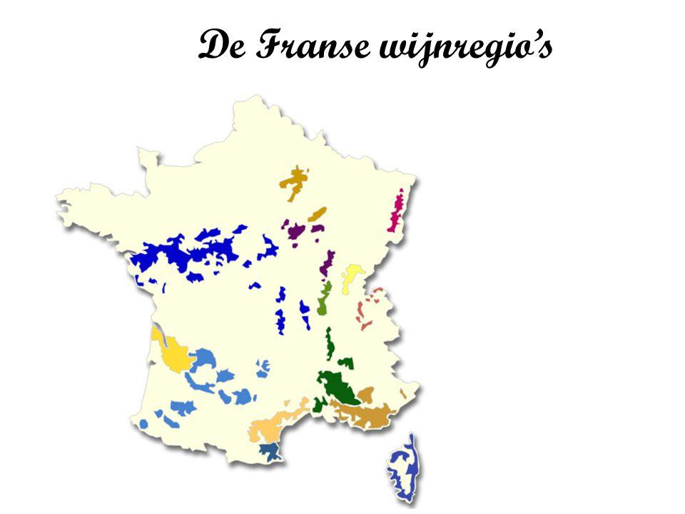 Druivenrassen Gemeenschappelijk kenmerk : frisheid, levendigheid en elegantie Chenin blanc (pineau de la Loire), sauvignon blanc, pinot noir, gamay, cabernet franc, muscadet (melon de Bourgogne), romorantin (uniek : Cour-Cheverny), cabernet sauvignon