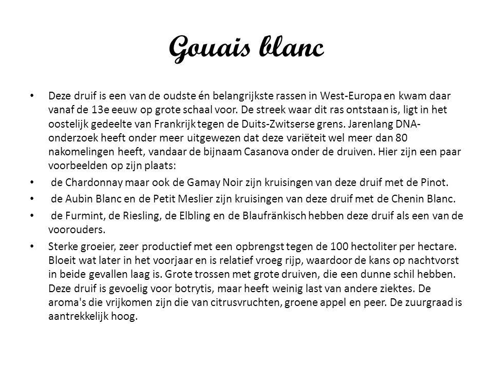 Gouais blanc Deze druif is een van de oudste én belangrijkste rassen in West-Europa en kwam daar vanaf de 13e eeuw op grote schaal voor. De streek waa