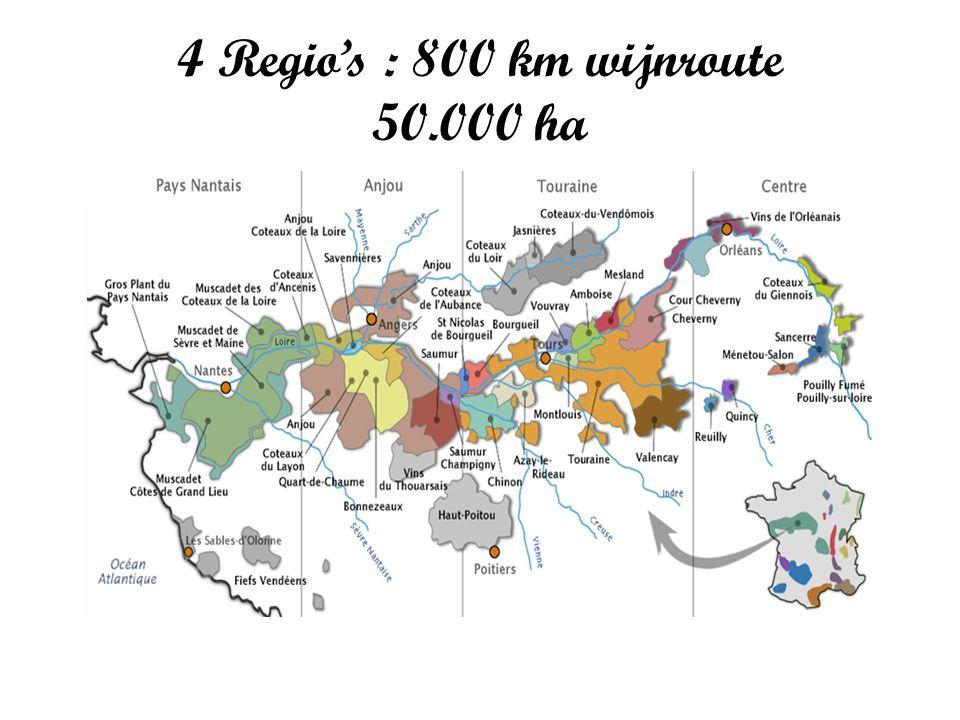 4 Regio's : 800 km wijnroute 50.000 ha