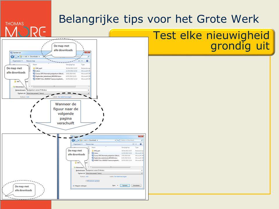 Nick Sauvillers & Jean-Pierre Pluymers Belangrijke tips voor het Grote Werk Test elke nieuwigheid grondig uit