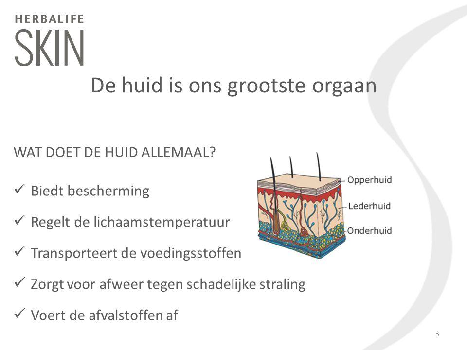 De huid is ons grootste orgaan WAT DOET DE HUID ALLEMAAL? Biedt bescherming Regelt de lichaamstemperatuur Transporteert de voedingsstoffen Zorgt voor