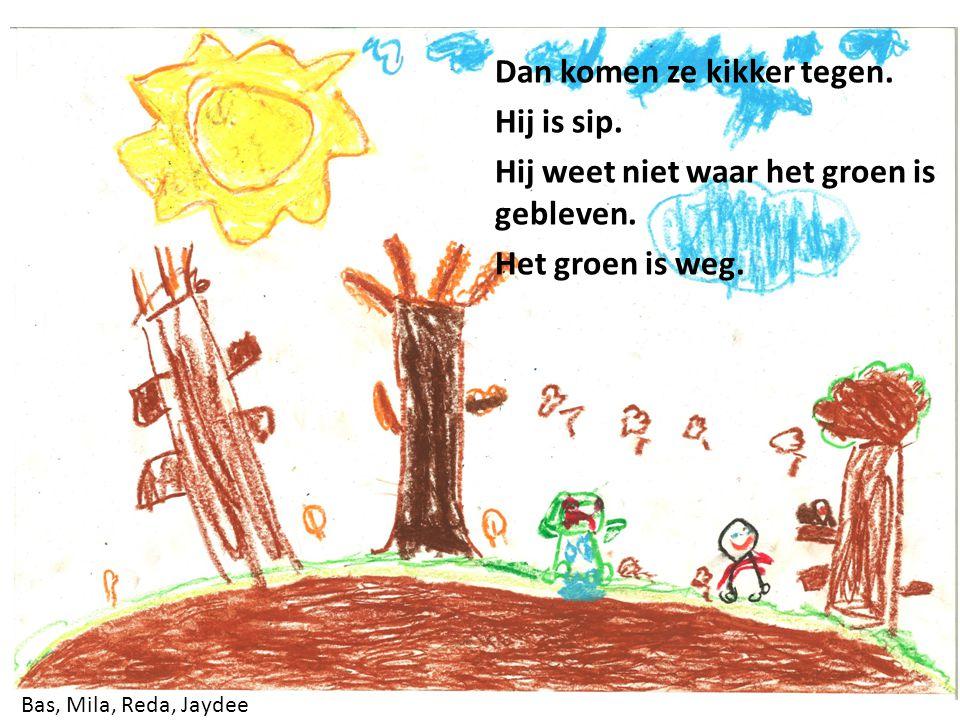 Safouane, Noor, Damian, Christian Das en eekhoorn lachen. Kikker is zelf groen.
