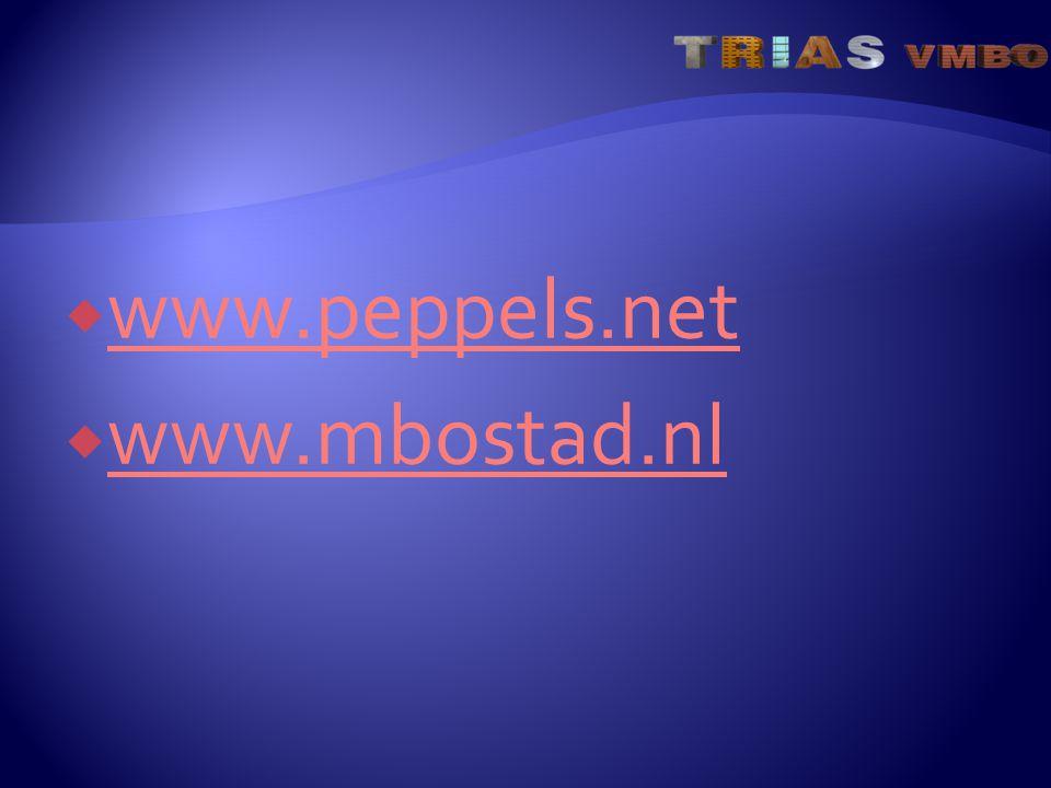  www.peppels.net www.peppels.net  www.mbostad.nl www.mbostad.nl
