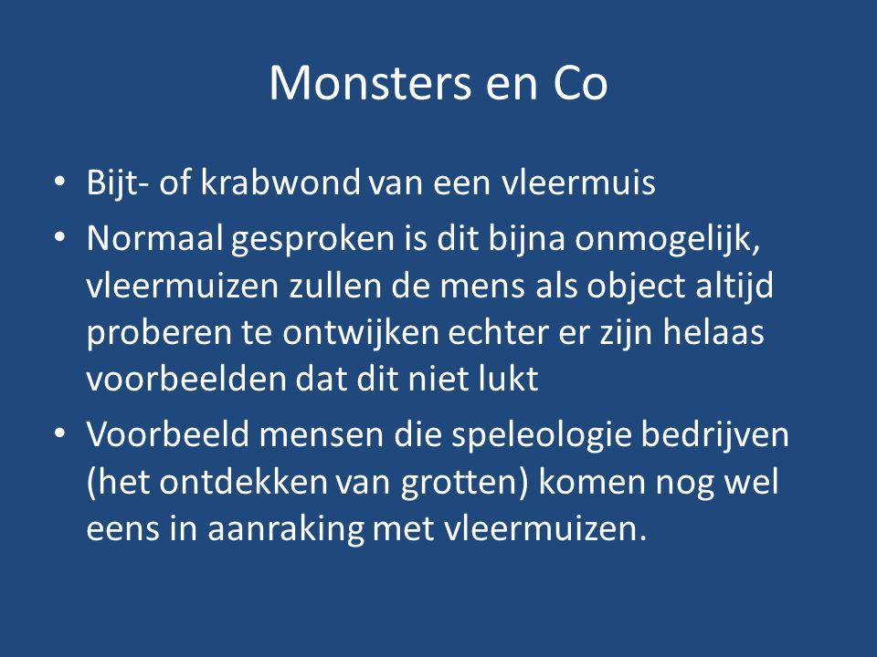 Monsters en Co Bijt- of krabwond van een vleermuis Normaal gesproken is dit bijna onmogelijk, vleermuizen zullen de mens als object altijd proberen te