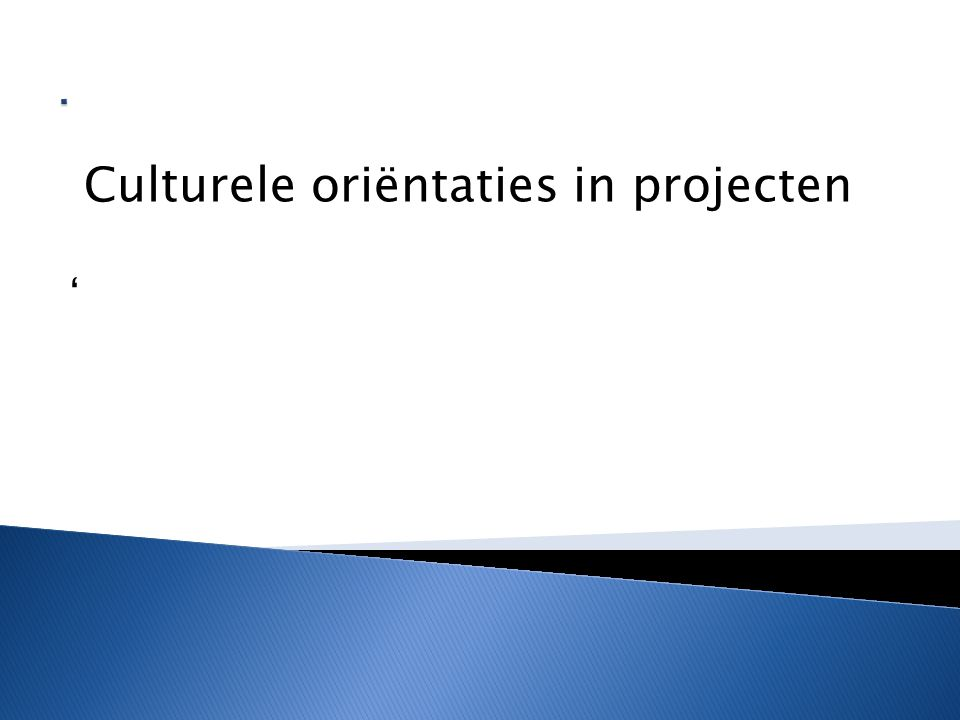 . Culturele oriëntaties in projecten '