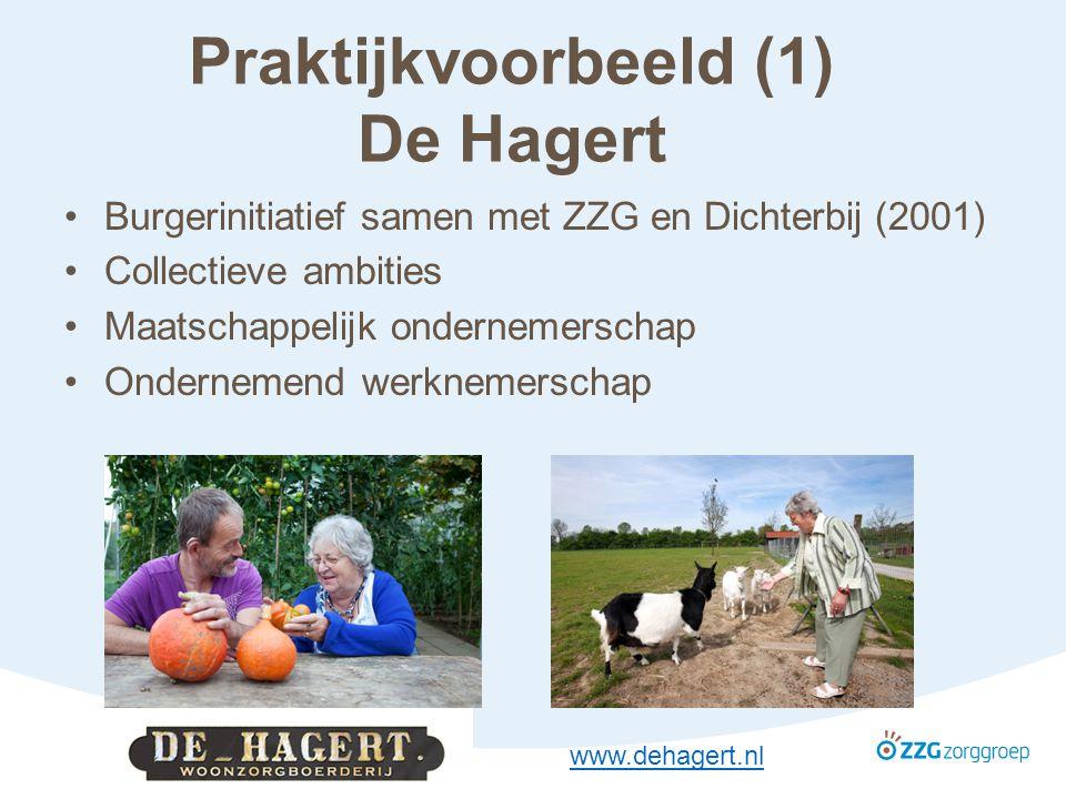 Praktijkvoorbeeld (1) De Hagert Burgerinitiatief samen met ZZG en Dichterbij (2001) Collectieve ambities Maatschappelijk ondernemerschap Ondernemend werknemerschap www.dehagert.nl