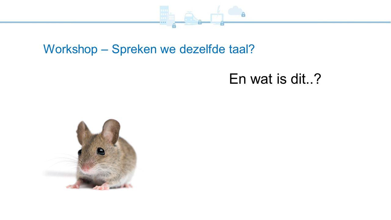 Workshop – Spreken we dezelfde taal? En wat is dit..?