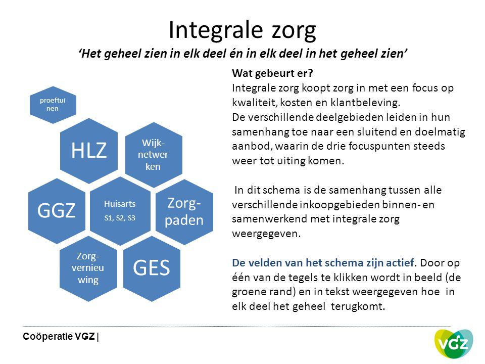 Integrale zorg 'Het geheel zien in elk deel én in elk deel in het geheel zien' Wijk- netwer ken HLZ proeftui nen Zorg- paden Huisarts S1, S2, S3 GGZ Z