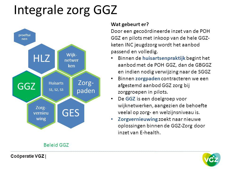 Integrale zorg GGZ Wijk- netwer ken HLZ proeftui nen Zorg- paden Huisarts S1, S2, S3 GGZ Zorg- vernieu wing GES Wat gebeurt er? Door een gecoördineerd