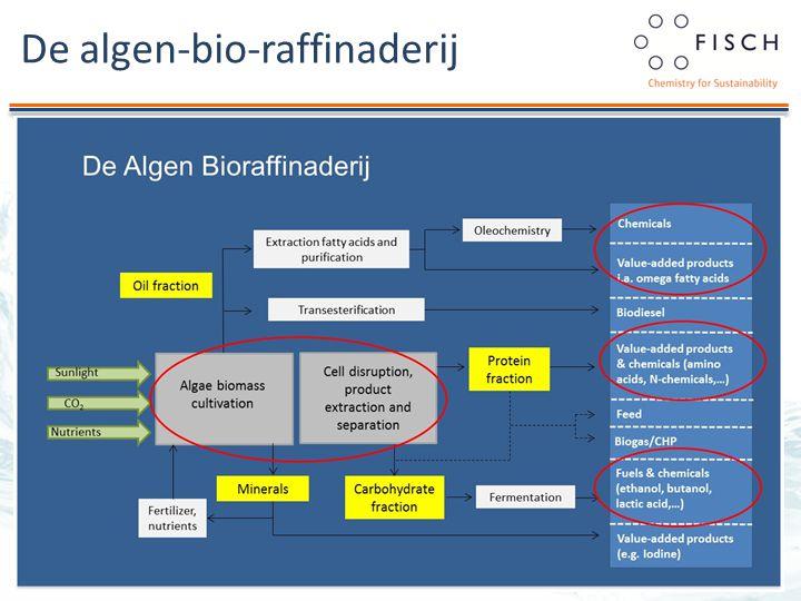 De algen-bio-raffinaderij