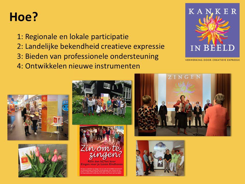 Wat ? Doelstelling 1: Regionale en lokale netwerken/participatie: