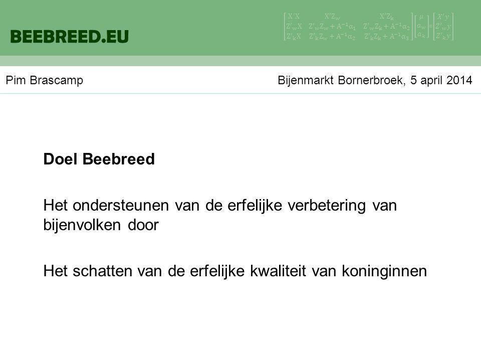 Doel Beebreed Het ondersteunen van de erfelijke verbetering van bijenvolken door Het schatten van de erfelijke kwaliteit van koninginnen BEEBREED.EU Pim Brascamp Bijenmarkt Bornerbroek, 5 april 2014