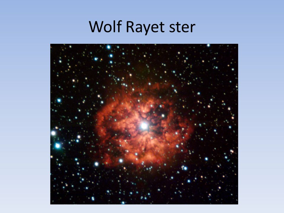 Wolf Rayet ster