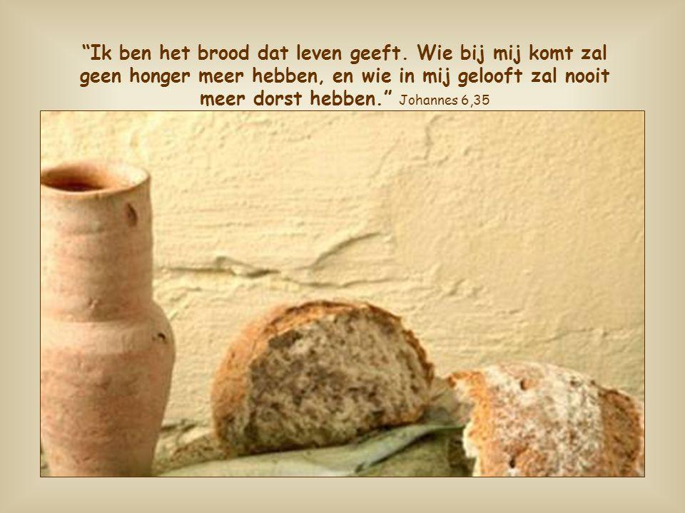 Dankzij dit brood wordt het leven van de christelijke gemeenschap tot het leven van Jezus.