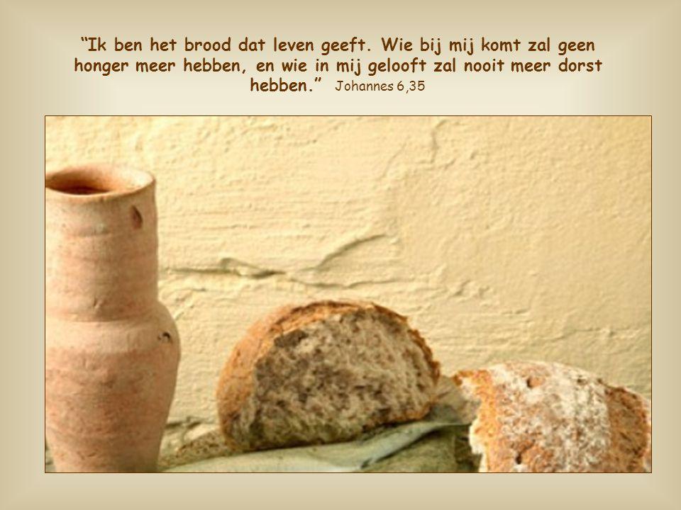 Als we ons voeden met dit brood wordt ieder verlangen naar liefde en waarheid verzadigd door Hem die de Liefde zelf is, de Waarheid in persoon.