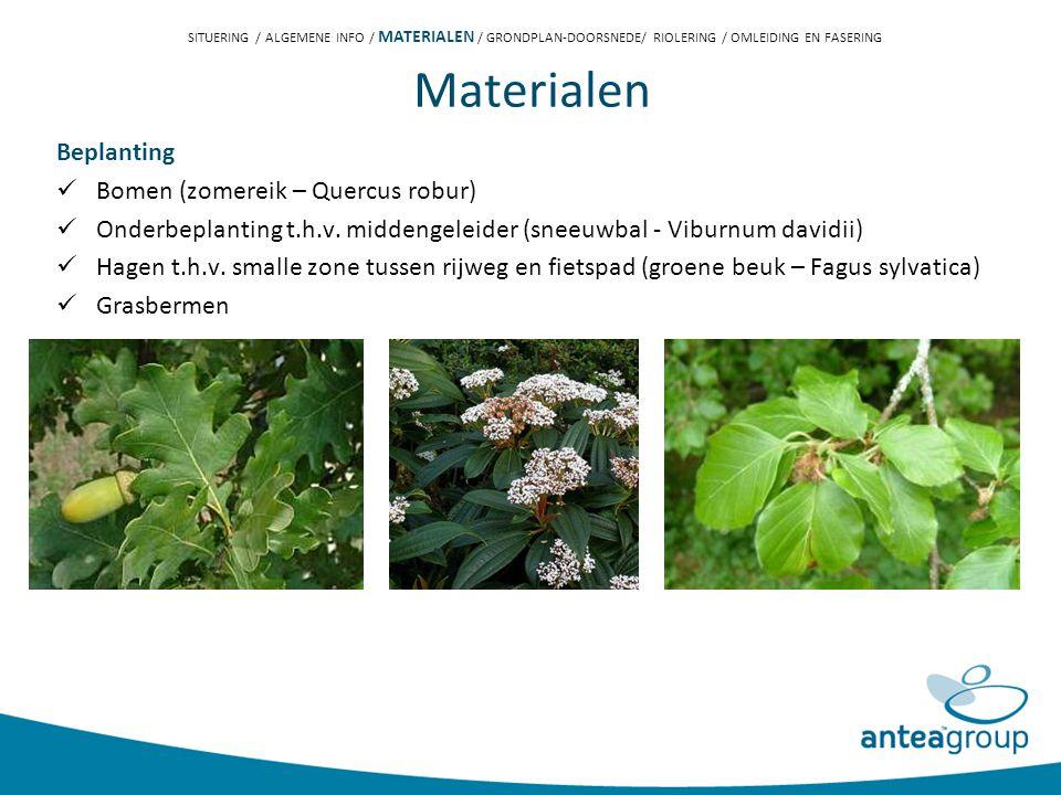 Materialen Beplanting Bomen (zomereik – Quercus robur) Onderbeplanting t.h.v.