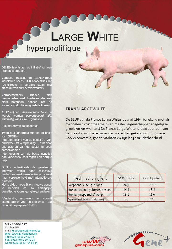 Ons bedoeling is vermeerderaars te bevoorraden met fokdieren met een sterk potentieel om de varkens productie ten goede te komen De groep GENE+ is ont