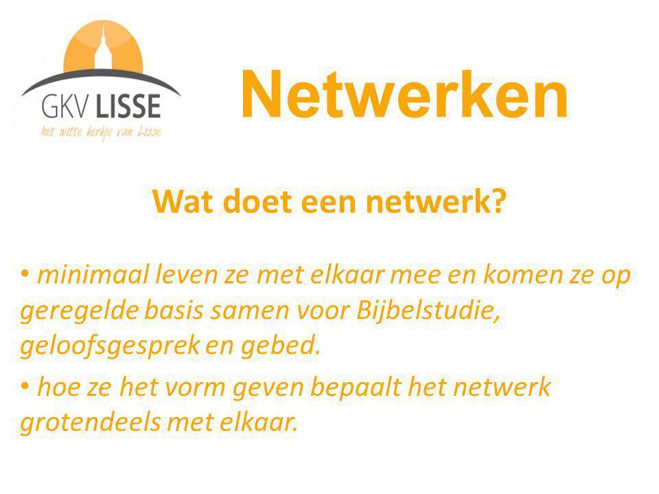 Wat doet een netwerk.