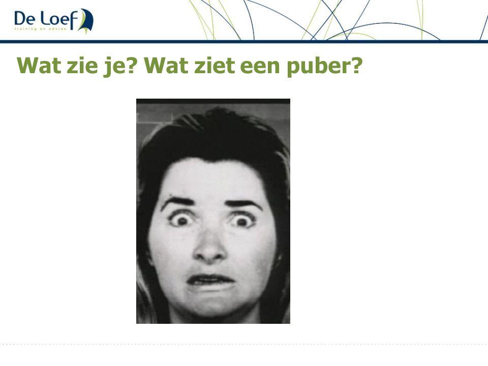 Wat zie je? Wat ziet een puber?
