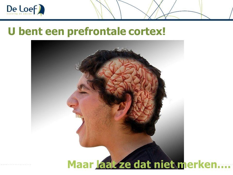 U bent een prefrontale cortex! Maar laat ze dat niet merken….