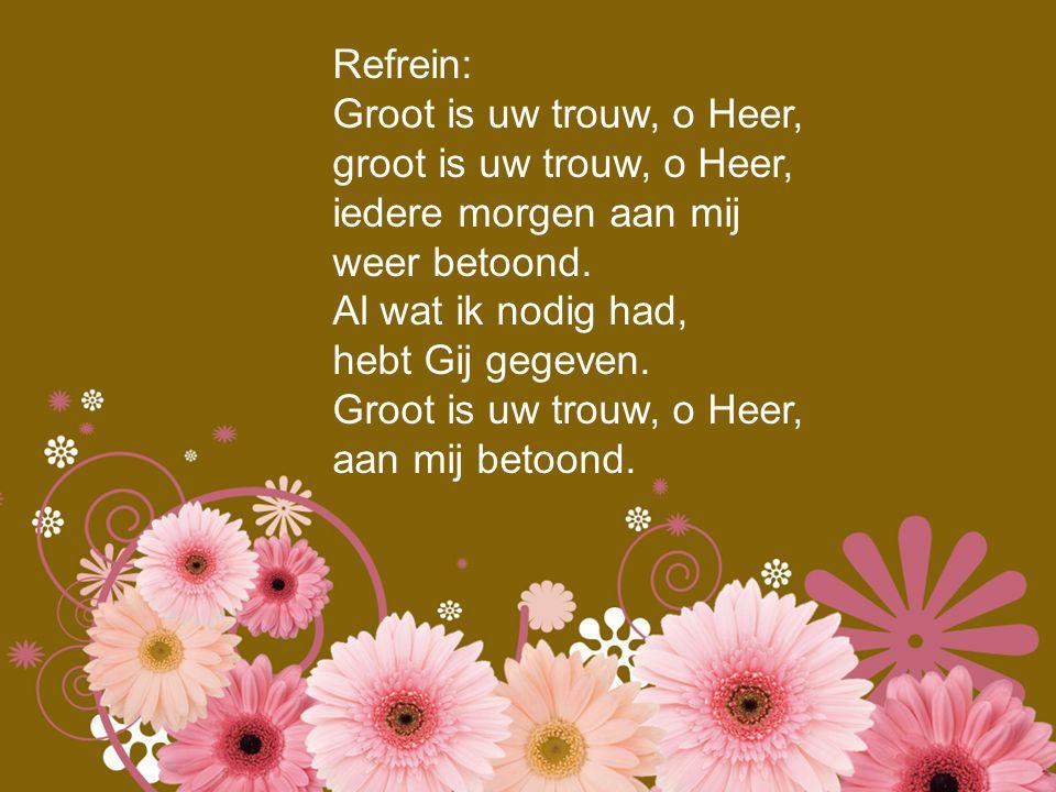 Refrein: Groot is uw trouw, o Heer, groot is uw trouw, o Heer, iedere morgen aan mij weer betoond. Al wat ik nodig had, hebt Gij gegeven. Groot is uw