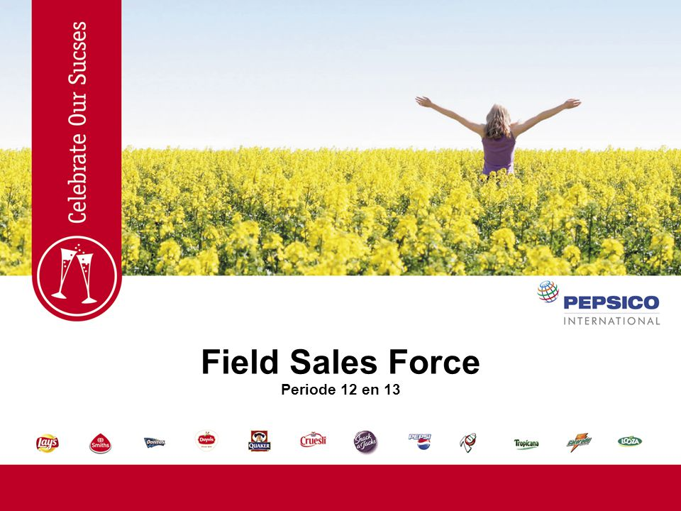 Field Sales Force Periode 12 en 13