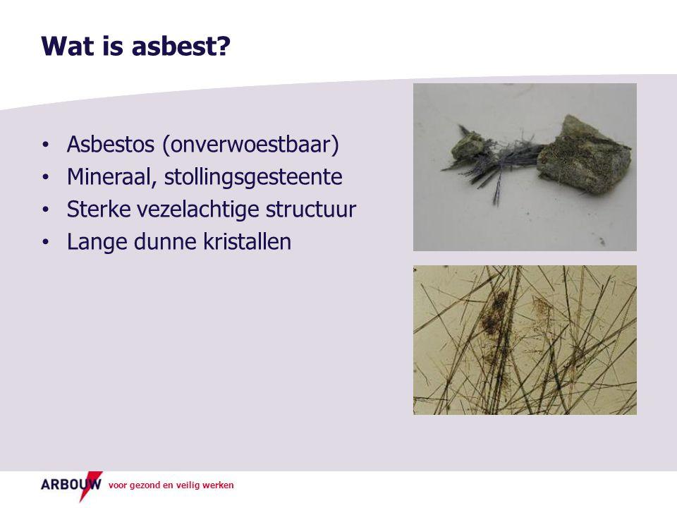Wat is asbest? Asbestos (onverwoestbaar) Mineraal, stollingsgesteente Sterke vezelachtige structuur Lange dunne kristallen
