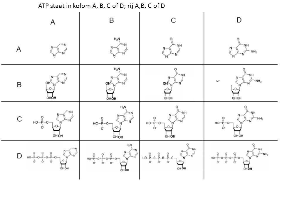 ATP staat in kolom A, B, C of D; rij A,B, C of D OH