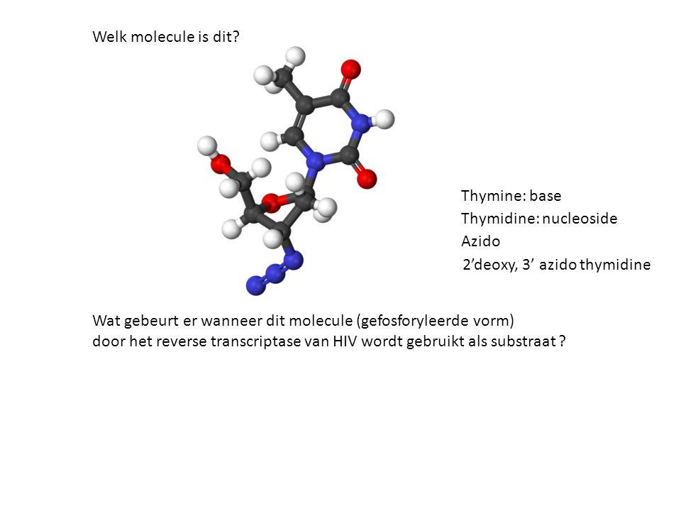 Welk molecule is dit.