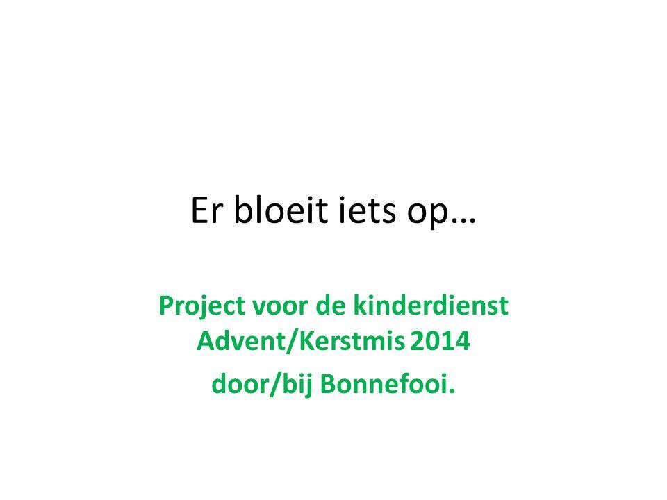 Er bloeit iets op… Project voor de kinderdienst Advent/Kerstmis 2014 door/bij Bonnefooi.