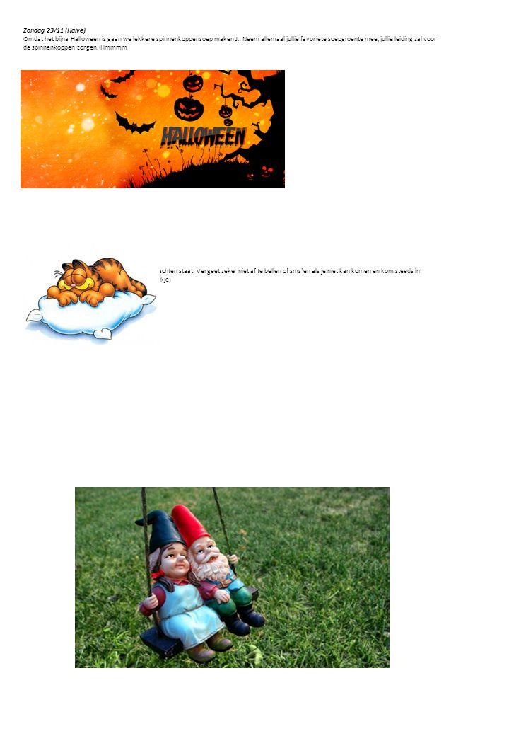 Zondag 23/11 (Halve) Omdat het bijna Halloween is gaan we lekkere spinnenkoppensoep maken J.